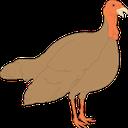 Rein-TurkeyMod icon